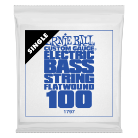Ernie Ball Flatwound .100 Single Long Scale Electric Bass String P01797
